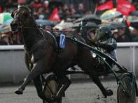 Maharajah remporte le Grand Prix d'Amérique 2014 à Vincennes